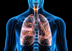 حساسیت ریه